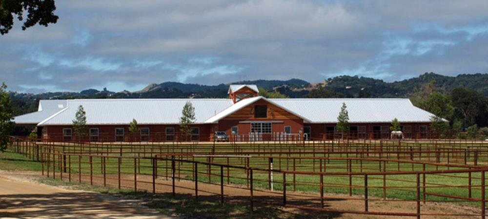 Templeton Farms Equestrian - Sporthorse - Breeding, Training and Sales.